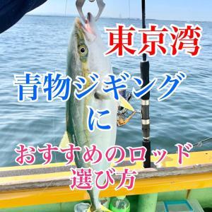 東京湾・青物ジギングロッドの選び方・種類|ロッドパワー、長さ、おすすめジギングロッド
