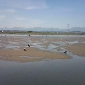 立田排水機場の釣り場とシジミ取りポイントを紹介 木曽川