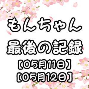 もんちゃん、最後の記録【05月11~12日】