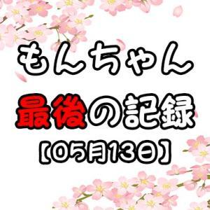 もんちゃん、最後の記録【05月13日】