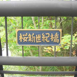 桜新世紀橋