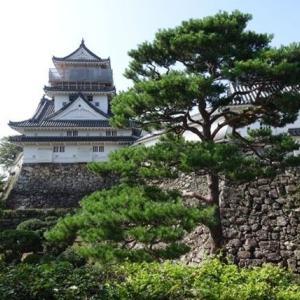 高知城散策からひろめ市場へ~四国満喫きっぷを使って四国周遊旅行⑧