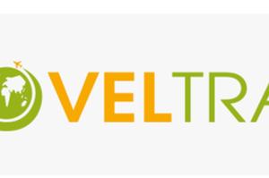 VELTRA(ベルトラ)~海外だけでなく、国内の日帰りツアーも良さげですよ~Go to トラベル対象