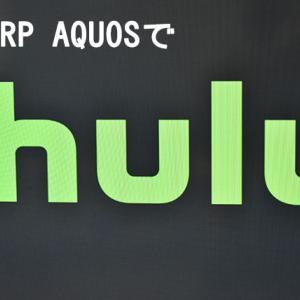 【感想】huluお試しから3か月利用した体験談 お試し期間中におすすめのドラマ・映画