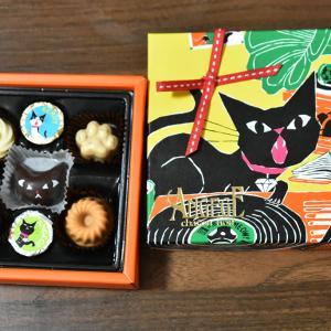 猫デザインのゴンチャロフ アンジュジュのチョコレート