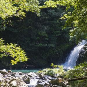 『奄美大島』海岸で男性死亡