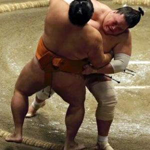 『照ノ富士』リモートでの記者会見