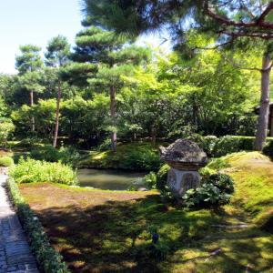 京都~観光とグルメの旅3~順正の美しい庭園