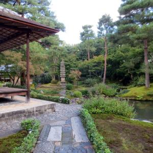 京都~続観光とグルメの旅2~順正の湯豆腐1