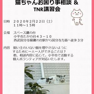 2/22(日)お困り事相談&TNR講習会