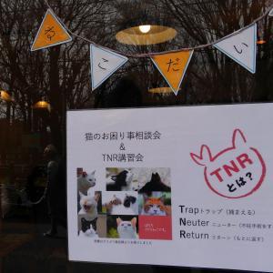 2/22 お困り事相談&TNR講習会報告