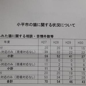 3/20(土) 小平市地域猫団体意見交換会かいさい ②