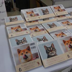 京王百貨店チャリティーイベント「みんなイヌ、みんなネコ」