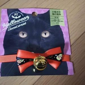かわいいハロウィン首輪買ったよ~!!