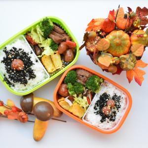 【中学生お弁当】タマちゃんでも出来る簡単チャーシュー入りお弁当