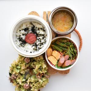 【久々お弁当】野菜だらけの糖質制限お弁当