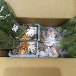 らでぃっしゅぼーや様より提供していただいた今月のお野菜はこちら!!