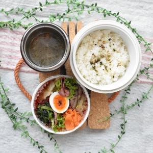 【アスリート弁当】野菜多めの胃腸に少し優しいお弁当