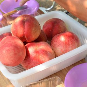 【レシピ】甘くない桃に当たってしまったらどうする?質問をいただきました