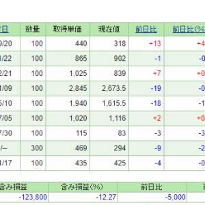 資産公開(2019年2月) 株式(NISA)