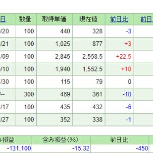 資産公開(2019年3月) 株式(NISA)