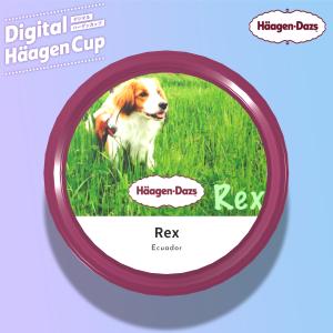 レックス風味がハーゲンダッツのアイスに登場!
