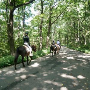 森林公園コースのご紹介