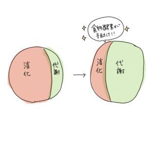 【詳細】パークヨガ&ピクニックベジごはんのお知らせ♬のびのびと外で体を伸ばそう!!