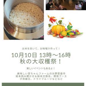 やります!!秋の大収穫祭!!お米炊いて、お味噌汁作って、お野菜昼市、絵本読み聞かせetc...♬