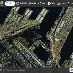 横浜なめんじゃねぇ:いるいる、沢山港に居る。