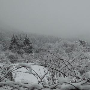 雪の清里 輝く八ヶ岳 and