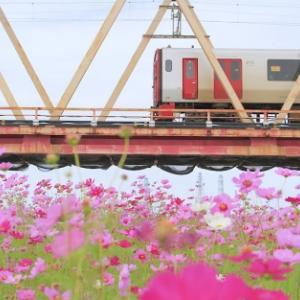 ふと本から窓に目を移す - 大野川河畔 -