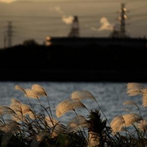 雲ひとつない一日が終わった - 大野川 -