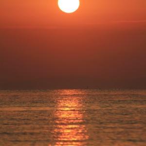 朝日を浴びて海へ - 糸が浜 -