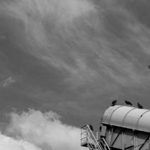 空を見上げる (豊海)