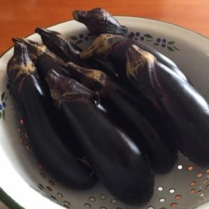 農家の方が丹精込めて作られた《旬の野菜》の美味しさ