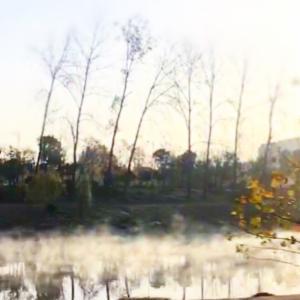 心理学I。AWII。湖畔ウォーク/紅葉。