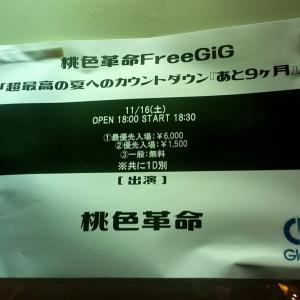 桃色革命 FreeGiG「超最高の夏へのカウントダウン『あと9ケ月』」11/16