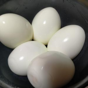 【今日の夕飯】ゆでたまご(のみ)その5 脂質とローファットの話