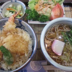 そば・天ぷら・うなぎ 南部屋敷四街道店