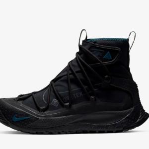 【汚れの似合う靴】Nike ACG Terra Antarktik GORE-TEX