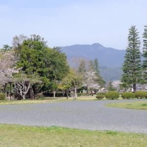 スケッチ・・・嵐山東公園より愛宕山