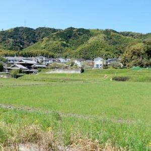 スケッチ・・・天王山田園風景