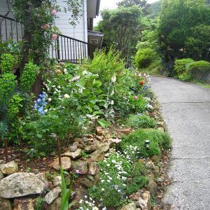 ガーデニング初心者さん どんな庭を作りたいですか?