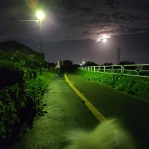 中秋の名月~からの~
