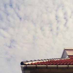 日本一周  160日目  最後の晩餐 (鳥取市~津山市)