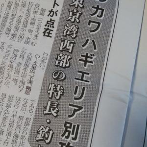 カワハギエリア別攻略法・東京湾外海西部