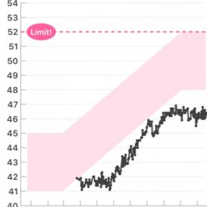 出産記のおまけ  妊娠中の体重推移