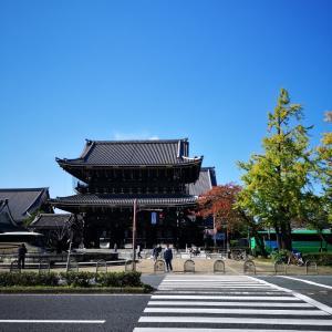 東本願寺から東寺  伏見御陵 魚三楼