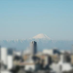 都心から見た富士山